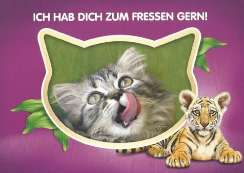 citycards_whiskas_ich_hab_dich_zum_fressen_gern